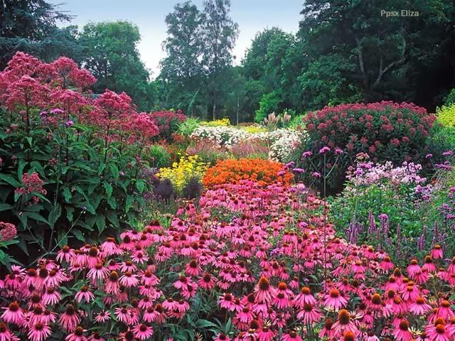 Mirando Al Mundo Con Sentimientos Jardines Con Encanto