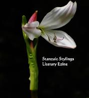 Stanzaic Stylings