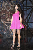 Katrina Kaif Dhoom 3 Song Launch (10).jpg
