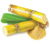 azucar, origen, historia, india, remedios cervantes, atrapa un millon, caña de azucar