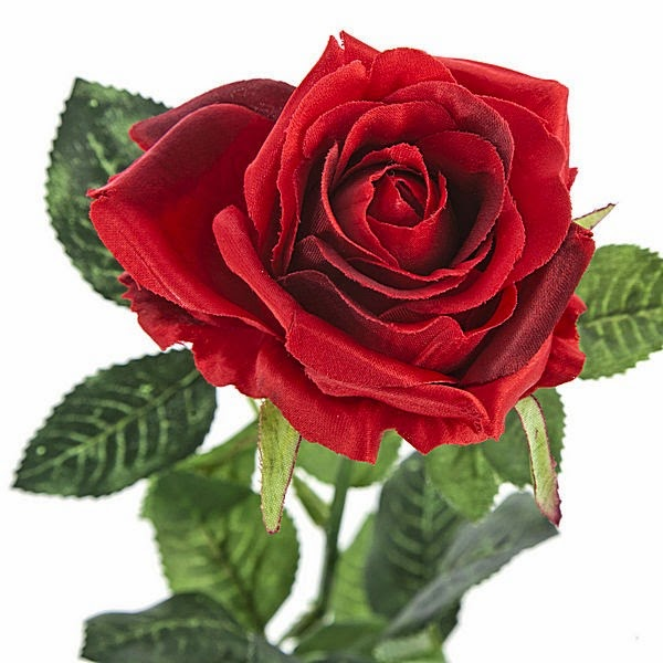 Las rosas en Garcilaso