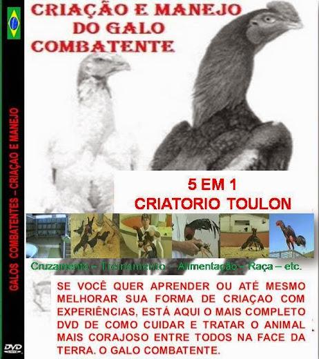 DVD CRIAÇÃO E MANEJO DO GALO COMBATENTE: Contato nelson.dmaio@gmail.com