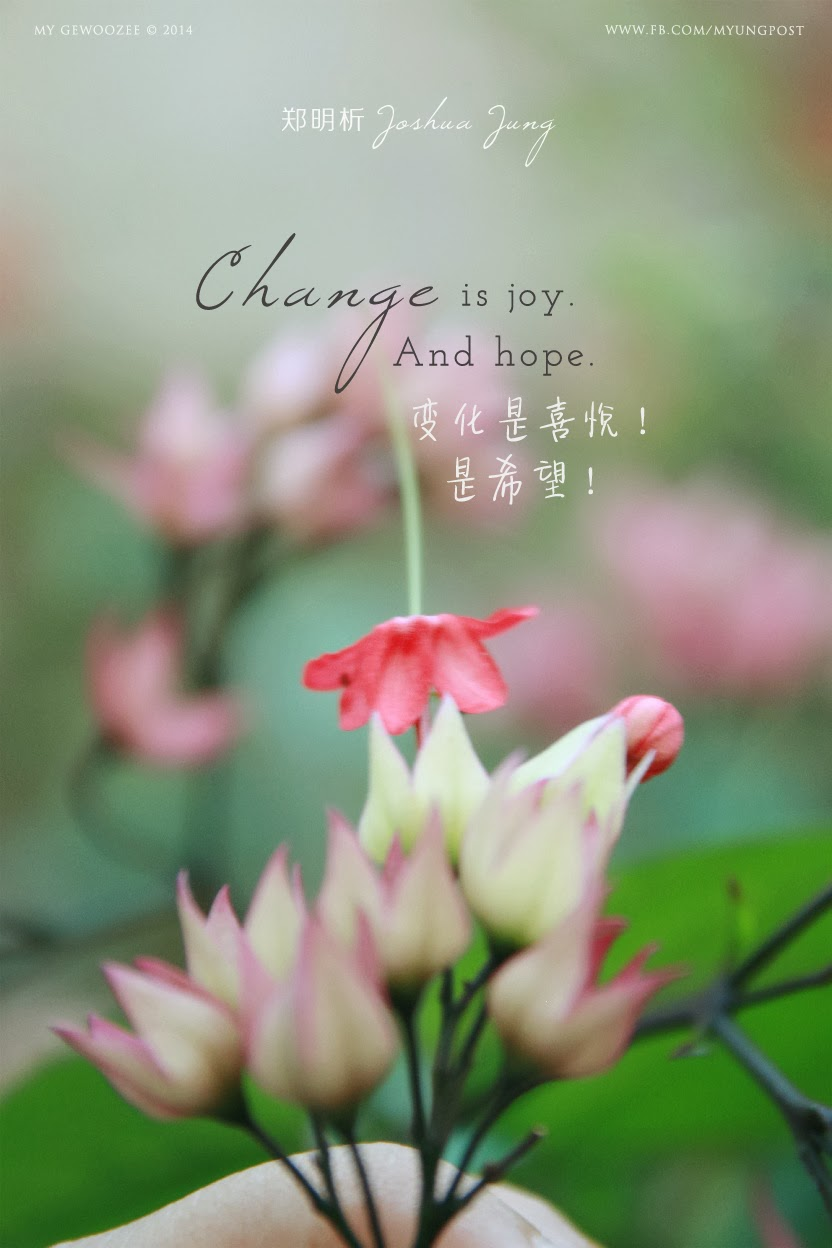 郑明析,摄理,Joshua Jung, Providence, Change, Joy, Hope