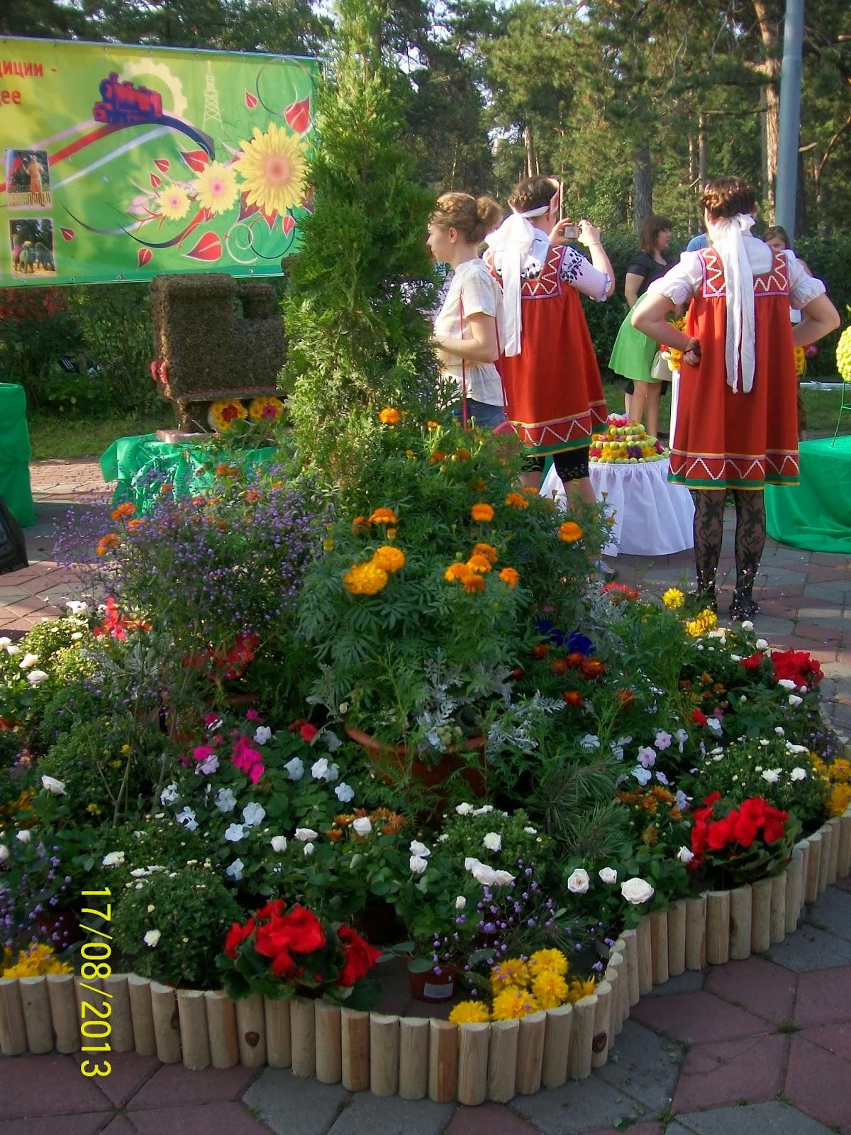 Выставка в детском саду цветы
