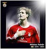 Eterno Miklos Feher (1979-2004)