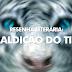 Resenha - A Maldição do Tigre [Coleen Houck]
