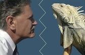 Life, Death and Iguanas