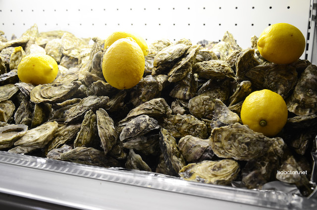 Fresh Irish Oysters