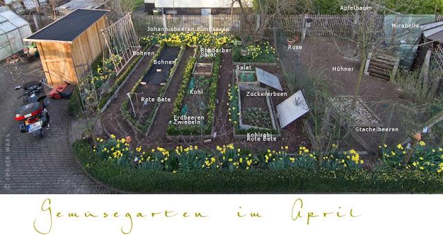 unser Gemüsegarten im April