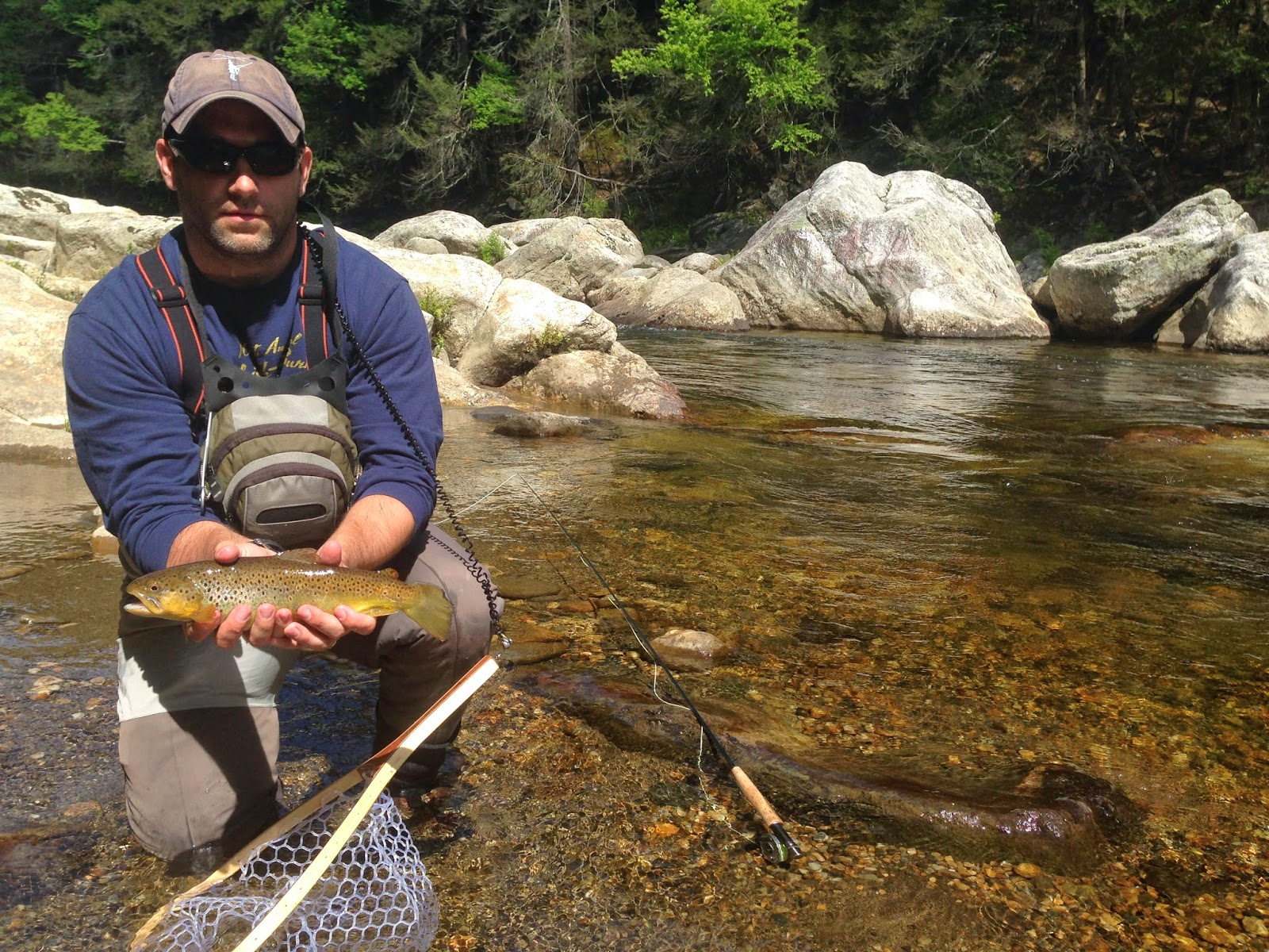 Fly fishing in new england westfield river for New england fishing