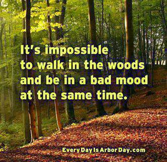 Technically speaking it is possible to walk in the woods and be in a ...