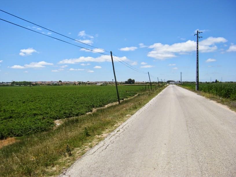 Estrada que vai para escaroupim