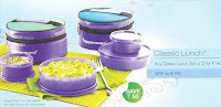 Tupperware Classic Lunch Bag Set of 2
