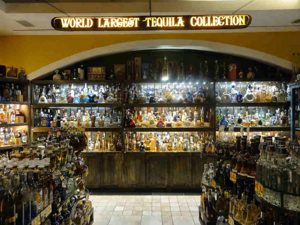 Tequila Museum