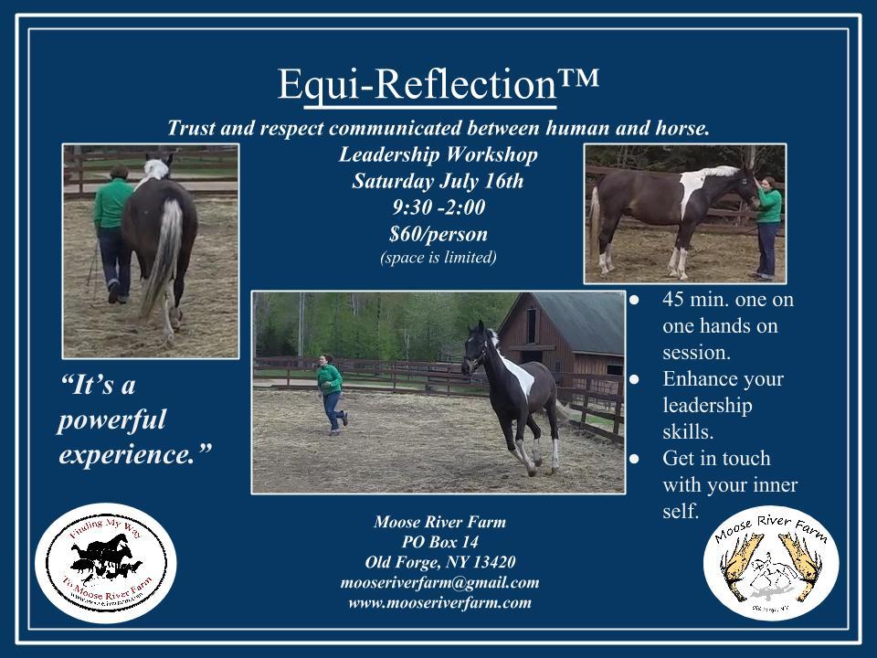 Equi-Reflection Workshop