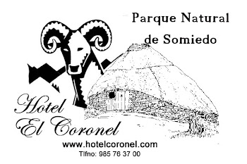 Hotel el Coronel (Puerto Somiedo)