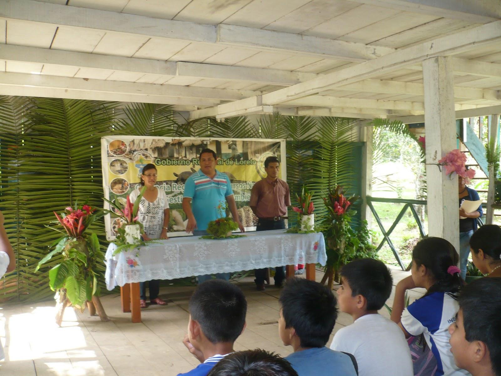 Gobierno regional de loreto gerencia regional de for Proyecto productivo de vivero forestal
