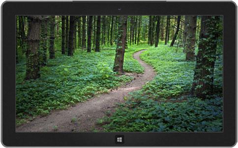 Footpaths Theme for Windows 7 & 8