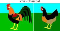 cha-charcoal.jpg