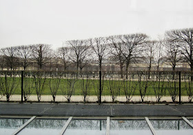 Paris: winter trees in the Tuileries