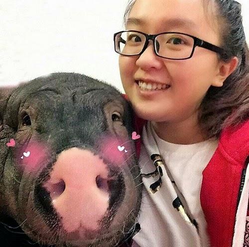 Pelik Wanita China Ini Berkongsi Katil dan Tidur Bersama Babi