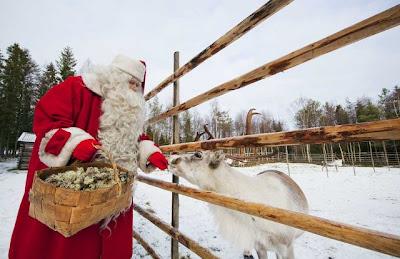 Santa claus acariciando un reno