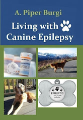 Living with Canine Epilepsy