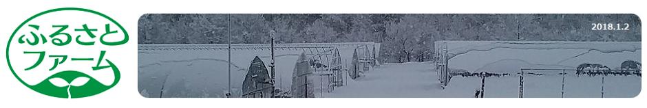 ふるさとファーム 北海道札幌市の農業法人