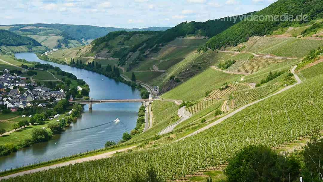 Mosel at Trittenheim