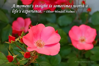 A-moments-insight-is-sometimes-worth-a-lifes-experience-Oliver-Wendell-Holmes-quote