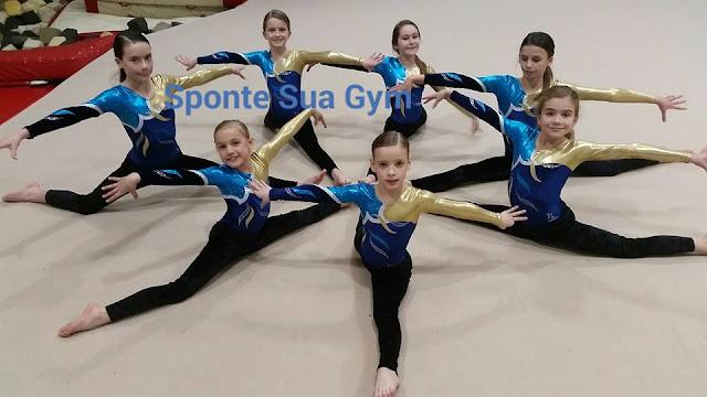 Pimlico gymnastics, Westminster gymnastics, Surbiton Gymnastics, Wimbledon , Tulse Hill gymnastics,