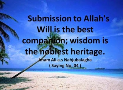 Submission to Allah's Will is the best companion; wisdom is the noblest heritage.