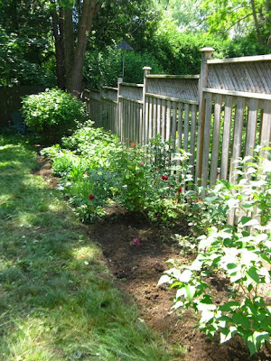 Garden bed cleanup after by paul jung ecological and organic gardening services toronto