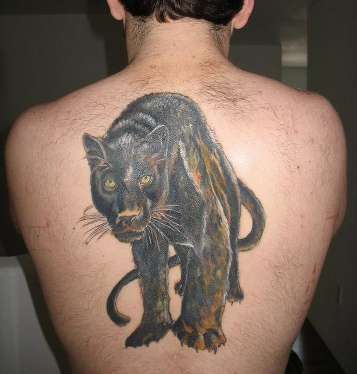 Panther Tattoojpg