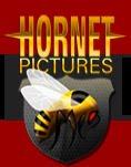 Hornet Website