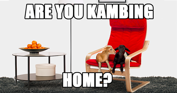 There's 'Goat' To Be Nothing Like 'Kambing' Home For CNY Because...