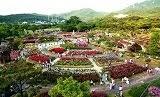 เทศกาลดอกกุหลาบที่ Seoul Grand Park