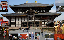 JAPÓN 10.1.2010