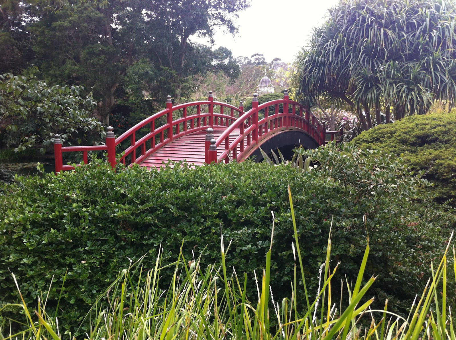 botanical gardens nsw wollongong owen wilson photography