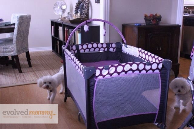 Bassinet Evenflo5