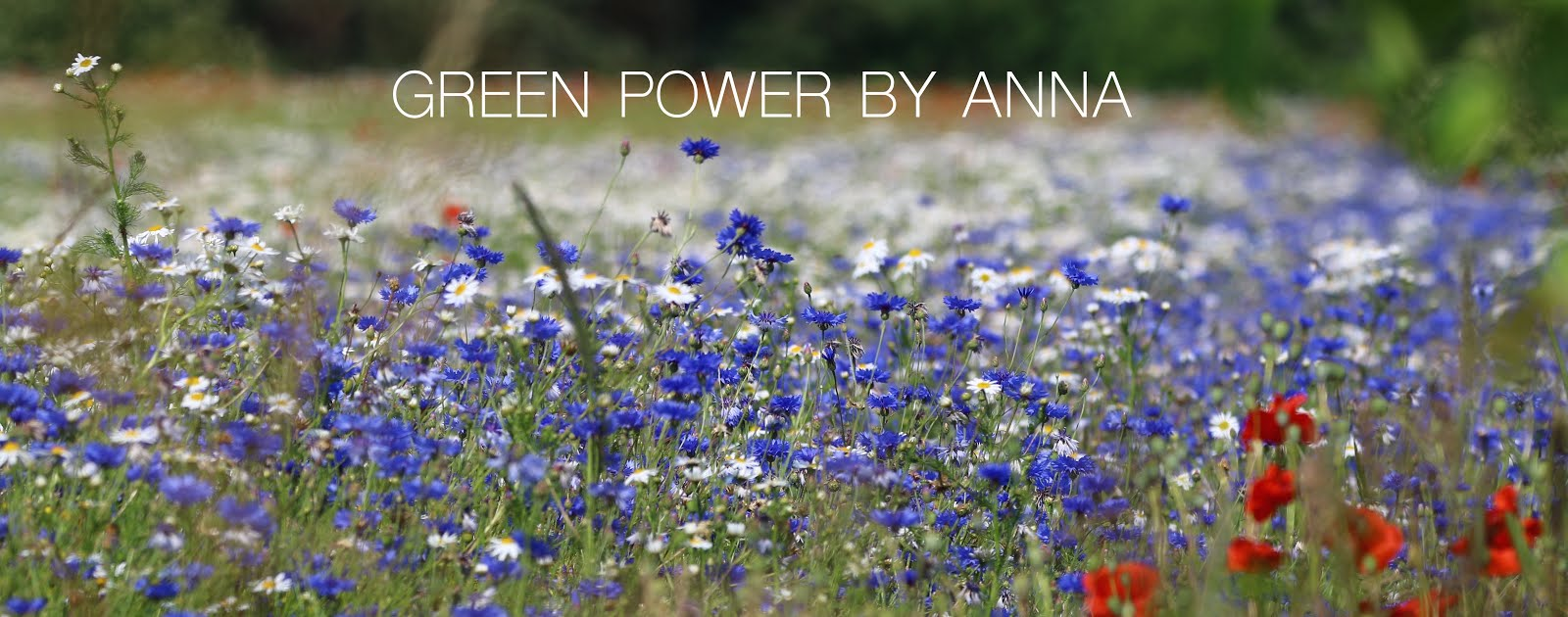 Green power by Anna