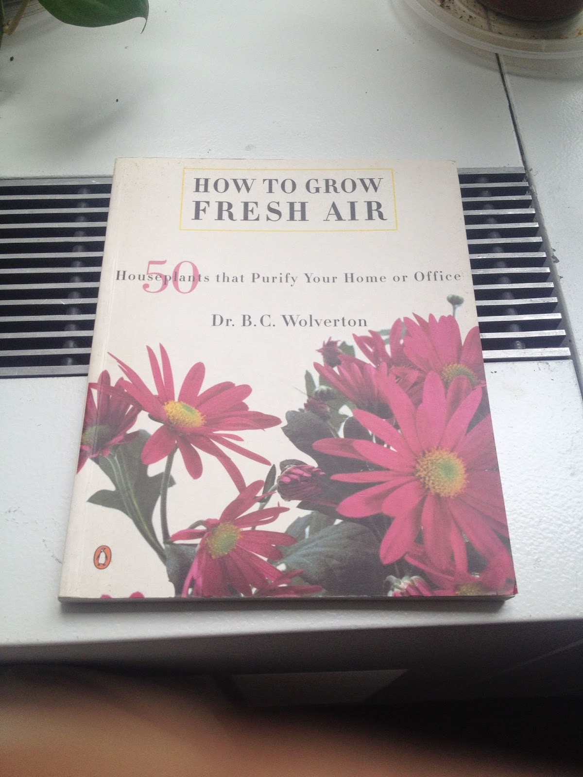 air filtering houseplants book