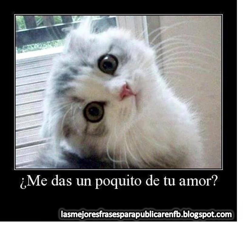 Frases De Amor: Me Das Un Poquito De Tu Amor