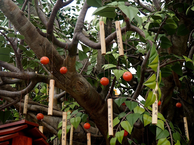 Chinese ornaments hanging in a tree in Ngong Ping village, Lantau Island, Hong Kong