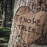 ¡ No a la destrucción de los Bosques...!