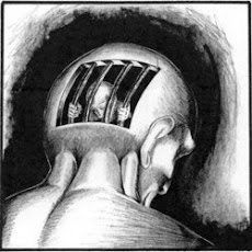 Solitary Confinement Psychological effects Fact-Sheet