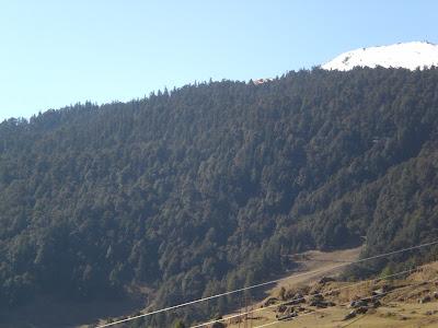 Gorson Top, Auli, Garhwal, Uttarakhand, weekend getaway, Himalayas, trek