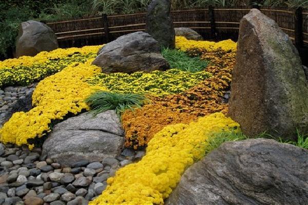 Crie Jardim Idéias para jardins  decoração com pedras