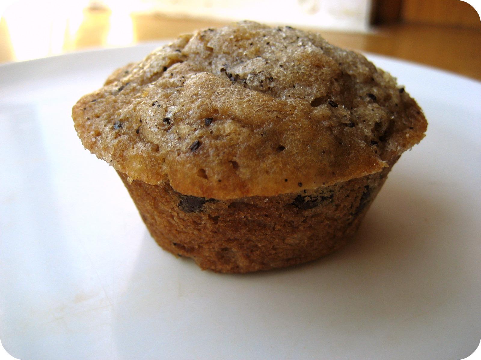 Espresso Chocolate Muffins Recipe — Dishmaps