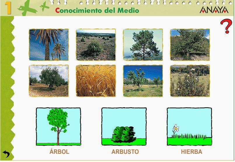http://centros.edu.xunta.es/ceipcampolongo/intraweb/Recunchos/1/Recursos_Anaya/datos/03_cmedio/03_Recursos/actividades/3LasPlantas/act2.htm